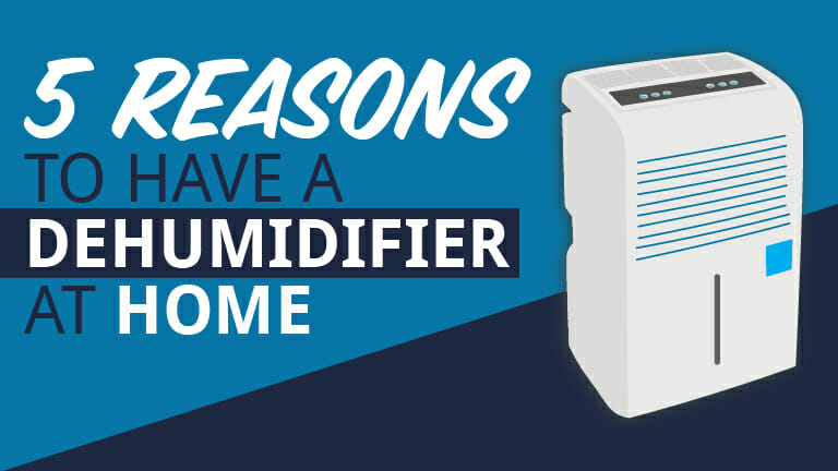 Appolo Heating describes the five top reasons consumers should have a dehumidifier at home